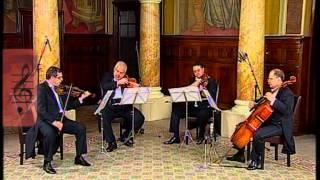 J. Haydn-Andante Cantabile