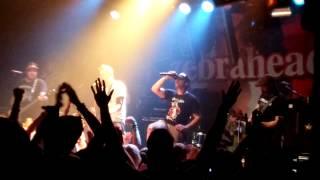 Zebrahead - Born To Lose, Live @ 013, Tilburg, 21-08-2014