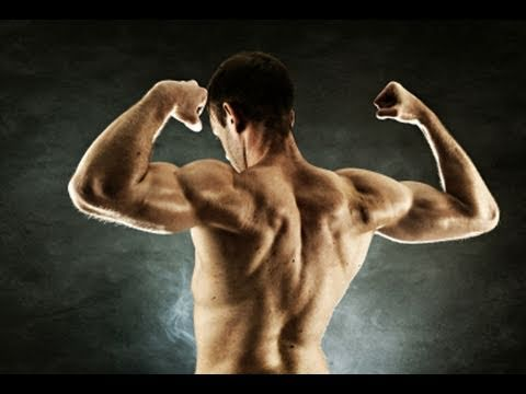 I Need Protein To Build Muscle