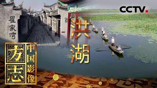 《中国影像方志》 第578集 湖北洪湖篇| CCTV科教