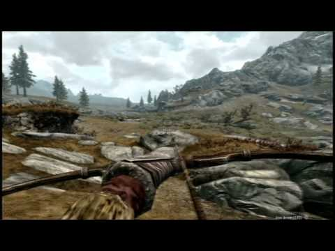 Skyrim: howto fix input lag and vertical sensitivity for