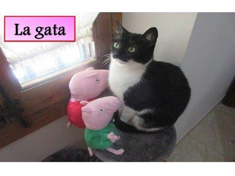 Peppa Pig tiene una gata como mascota | Vídeos de Peppa Pig en español