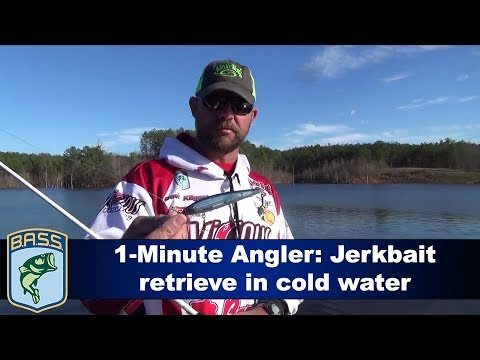 1-Minute Angler: Jerkbait retrieve in cold water