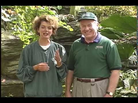 Indiana Outdoors episode 201