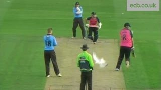 Ryan Higgins hits a seagull during Middlesex v Sussex T20