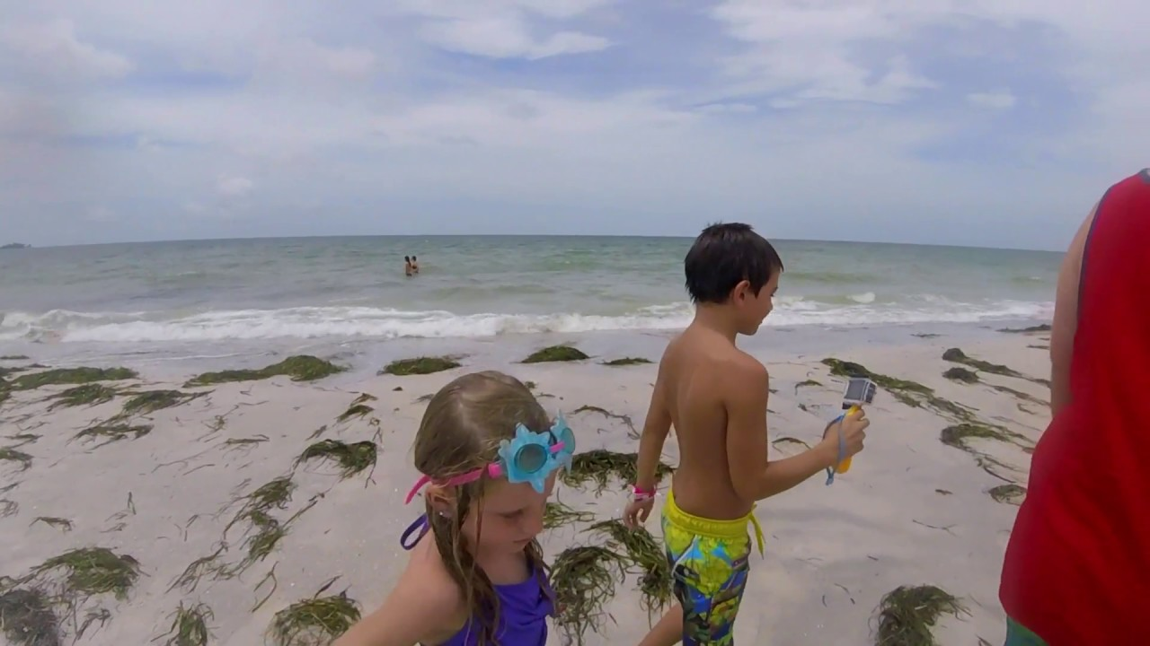 Lido Key Beach Sarasota Fl