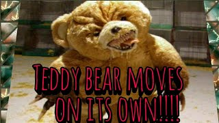 TEDDY BEAR MOVES BY ITSELF!! {CAUGHT ON CAMERA}!!