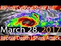 03/28/2017 | Raging Cyclone Hits Australia | Mysterious Reptile Death | Shark Attack Florida | More