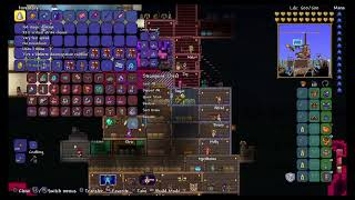 Terraria Chill Hang Out.