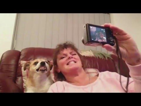 Dog Smiles for Selfie