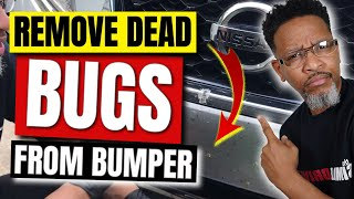 Removing Dead Bugs From Car Front Bumper (FAST)