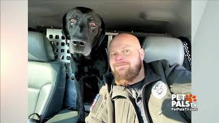 Retiring bomb dog gets a surprise gift!