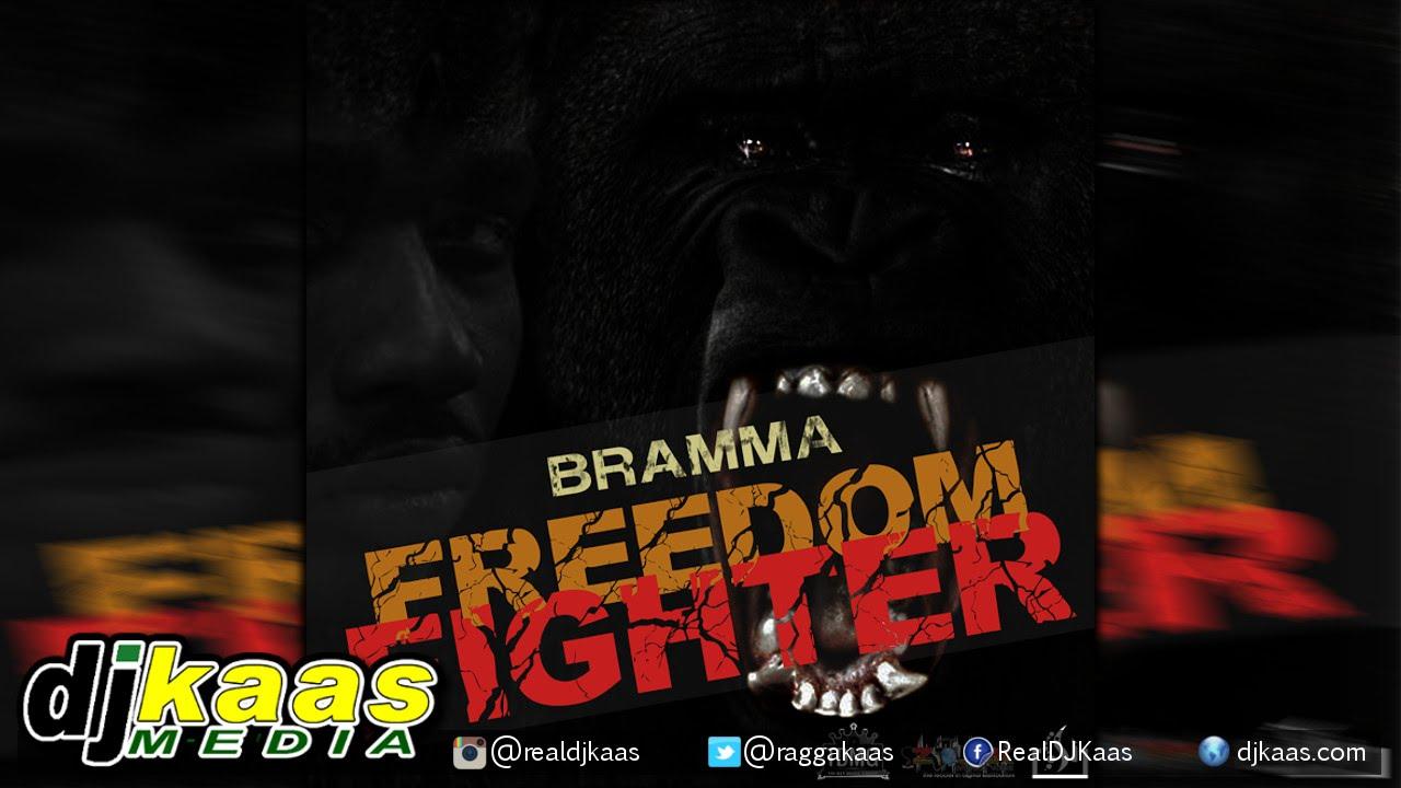 define freedom fighter