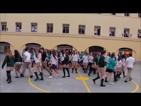 Flashmob Santa Rosa