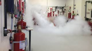 CO2 Fire Suppression System Discharge at Koorsen Training Center