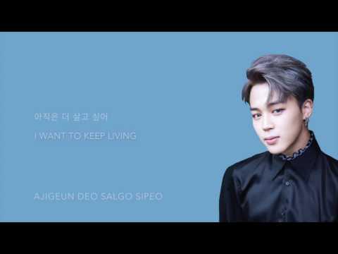 BTS (방탄소년단) - 'Am I Wrong' [Han|Rom|Eng lyrics]