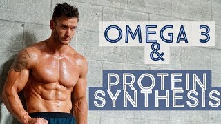 How Omega 3 Helps Build Muscle: Increase Protein Synthesis- Thomas DeLauer