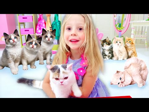 nastya-and-her-stories-about-cats-and-kittens