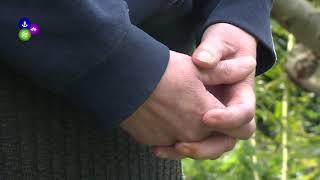 Aanslag op Joods gezin in Hippolytushoef (NH)