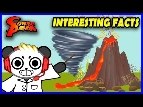 COMBO PANDA Learns INTERESTING FACTS ! Educational Video Learn Tornado + Volcano Lava