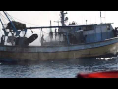 Sailing towards freedom. Breaking the siege again with the Palestinian fishermen under attack