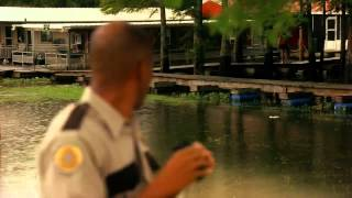 Swamp Sharks HD (2011)