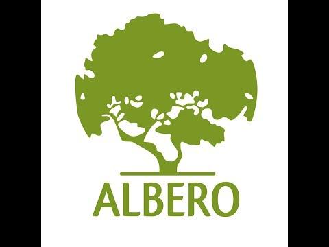 Двери Albero Качественно сделанные, но плохое покрытие