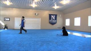 Ena (poodle) Dog Training With Mandarin Dog Commands