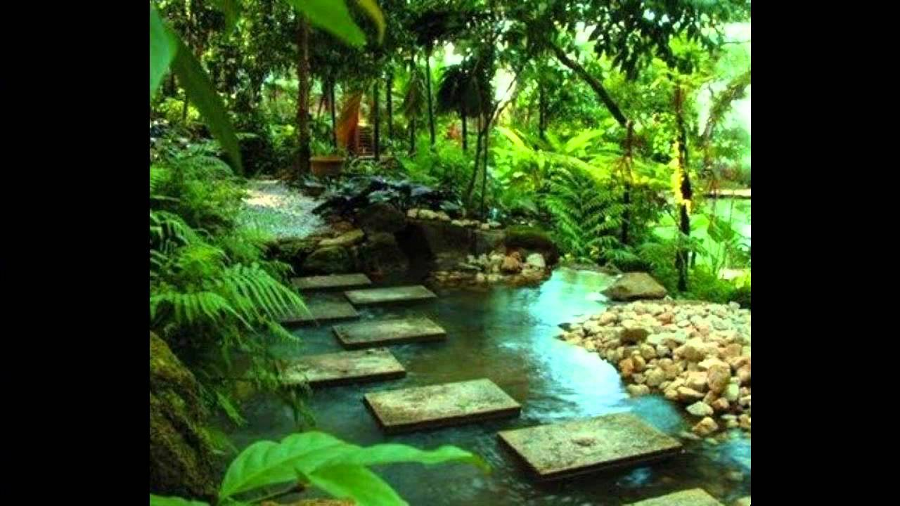 Small tropical garden ideas - YouTube on Tropical Small Backyard Ideas id=88186