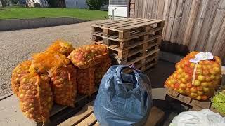 Apfelsaftpressen im Akkord - Mobile Apfelsaftpresse in Üxheim