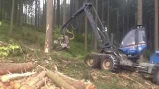 Forstbetrieb H.Stichnothe Rottne H20 7 Festmeter Fichte