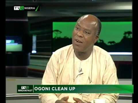 Ogoni cleanup