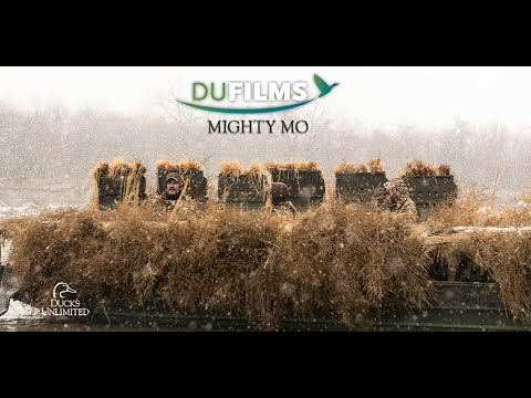 DU Films: Mighty Mo