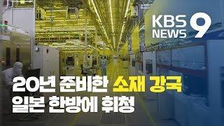 [탐사K] 20년 준비했다는 '소재 강국'…일본 한방에 '휘청' / KBS뉴스(News)