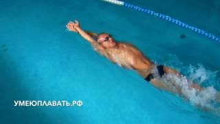 Как научиться плавать баттерфляем за 6 занятий.Урок 3.Волна на спине
