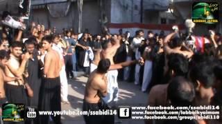 Zanjeer Zani 1434 / 2012 - Jaffria Colony Lahore