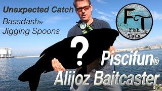 Unexpected Catch Fishing Milwaukee Harbor: Piscifun Alijoz Baitcaster  Field Test Review