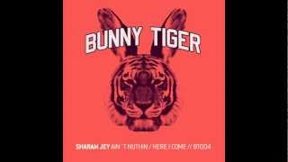 Sharam Jey - Here I Come! - Bunny Tiger004