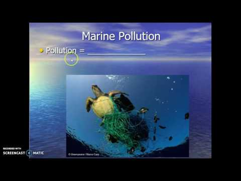 Impact of Humans on the Marine Environment Part 1