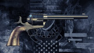 PAYDAY 2: Peacemaker 45 Build In Action [Death Sentence] [PS4]