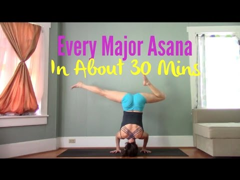 Hit Every Major Asana Group in About 30 Minutes - Vinyasa Flow Yoga Practice