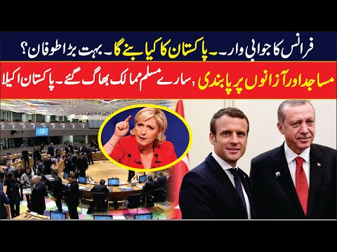 EU Parliament Resolution     Pakistan And France Relation