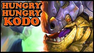 Grubby | Hungry Hungry Kodo
