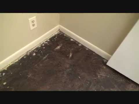 removing-black-tar-adhesive-from-a-concrete-floor...preview