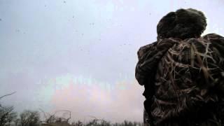Duck Hunting: Dream Come True