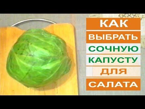 Как отличить белокочанную капусту