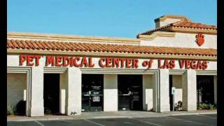 Animal Hospital Las Vegas   Las Vegas Animal Hospital