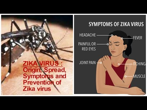 ZIKA VIRUS : Origin, Spread, Symptoms and Prevention of Zika virus