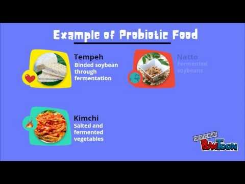 Copy of Probiotic video