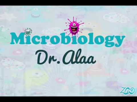 01 Microbiology |Dr Alaa - General Bacteriology